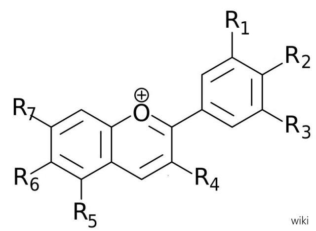 Anthocyanidins